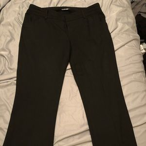 Gianni Bini Suit pants
